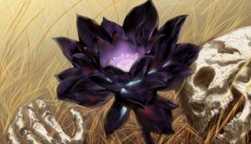 好一朵美麗的黑蓮花…