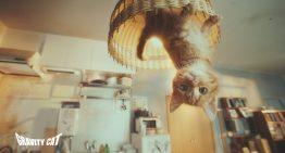 「重力的眩暈猫」廣告獲得世界最高峰坎城國際創意節七項大獎