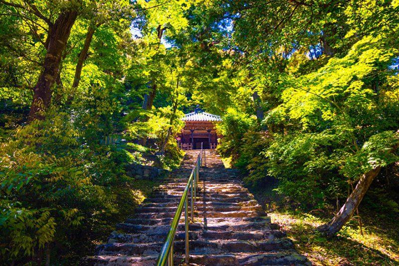 2018-1分享會|京都幾星霜:傳統與創新的取捨與思辮