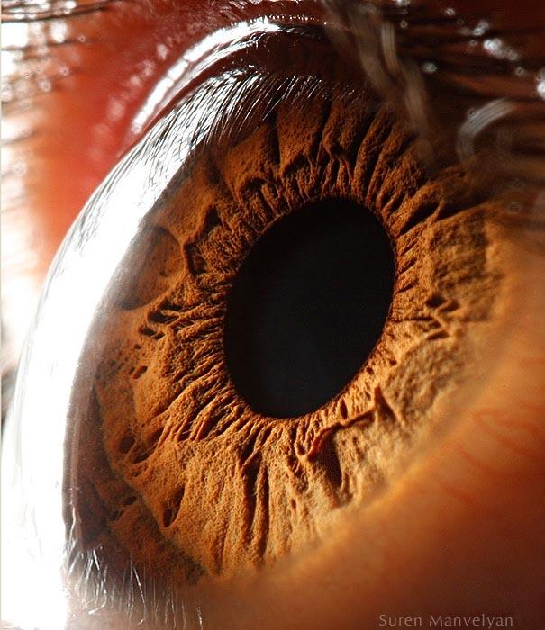 Google 申請近視矯正用電子眼膜裝置專利