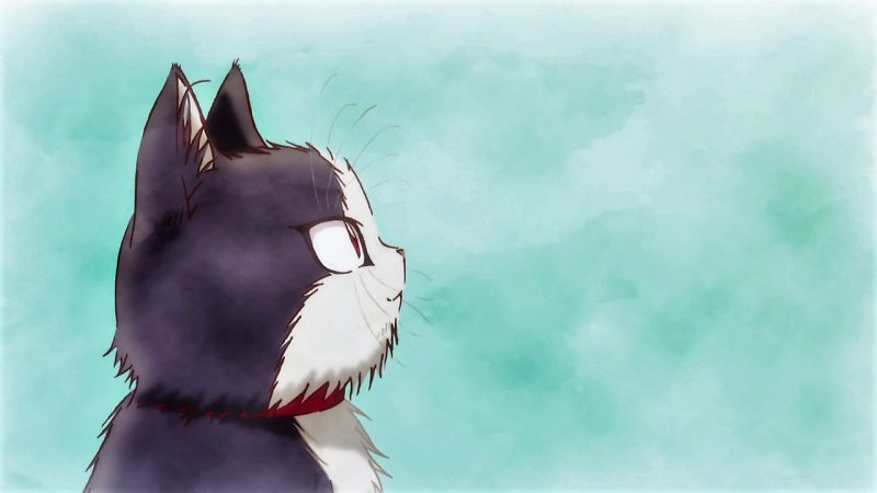 《同居人是貓》:日常的再構築與療傷